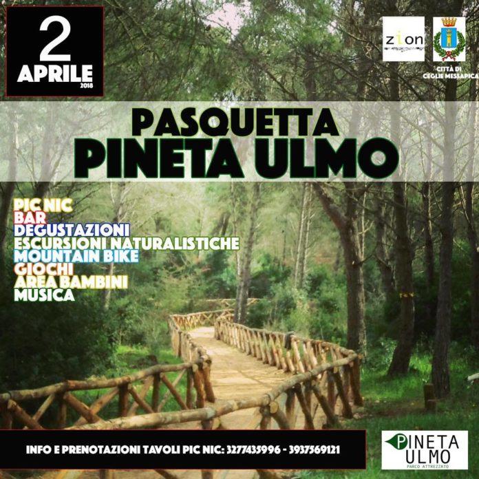 Pasquetta Pineta Ulmo