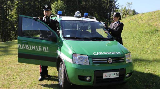 Una volante dei Carabinieri Forestali