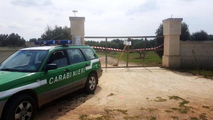 Sequestro Stalla Carabinieri Forestali Ceglie Messapica