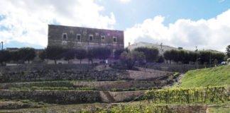 orti urbani di Ceglie Messapica